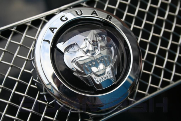 Jaguar Badge & Plinth